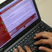 Person typing on laptop showing the Wannacry virus on screen